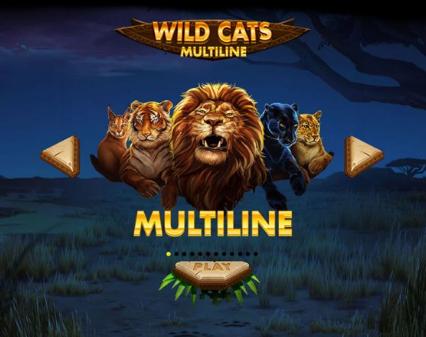 À la découverte de Wild Cats Multiline sur Casino777.ch